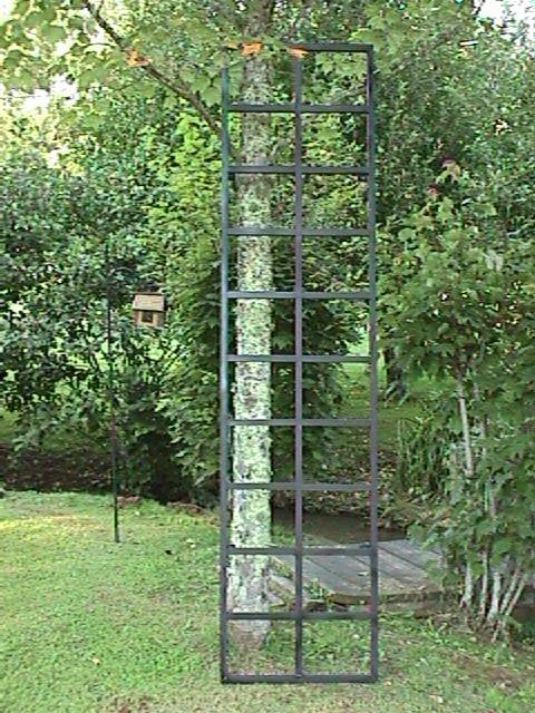 Metal Trellises. Vertical Gardening Aid