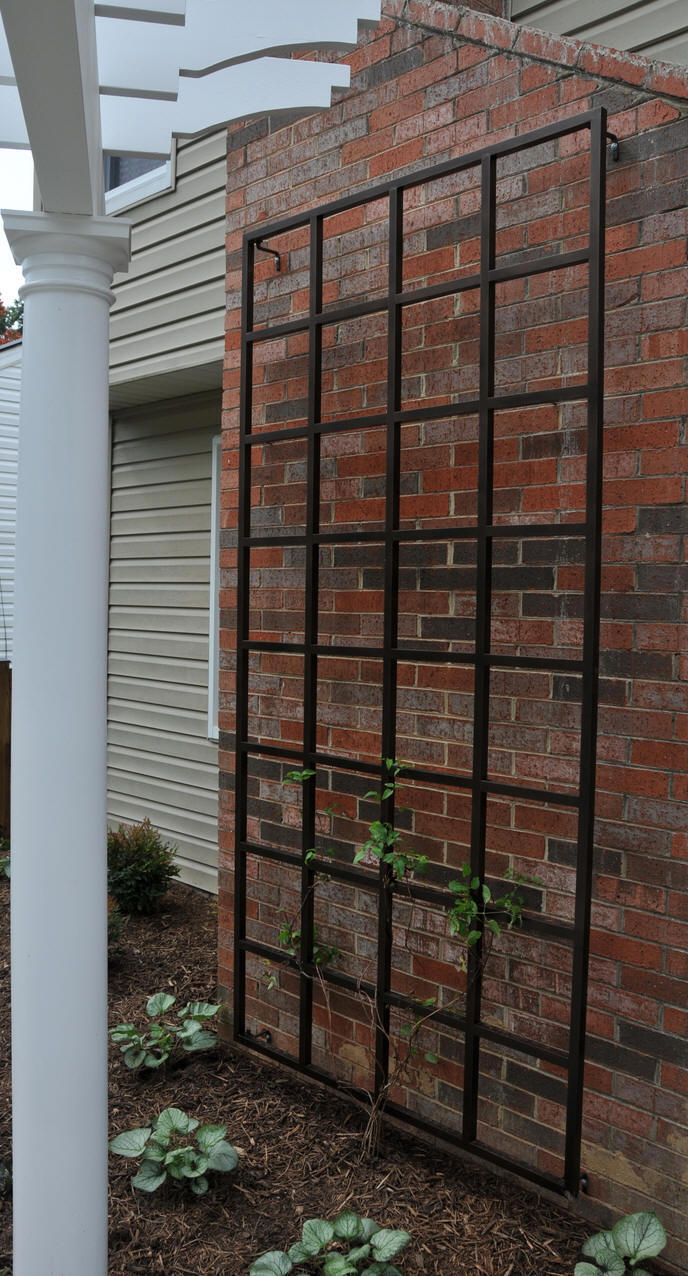 4 x 8 wall trellis for Wall trellis ideas