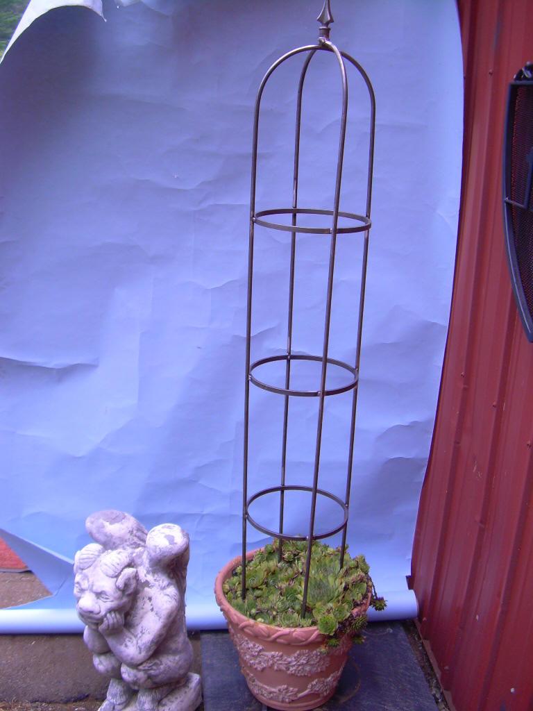 rose obelisk trellis. Black Bedroom Furniture Sets. Home Design Ideas